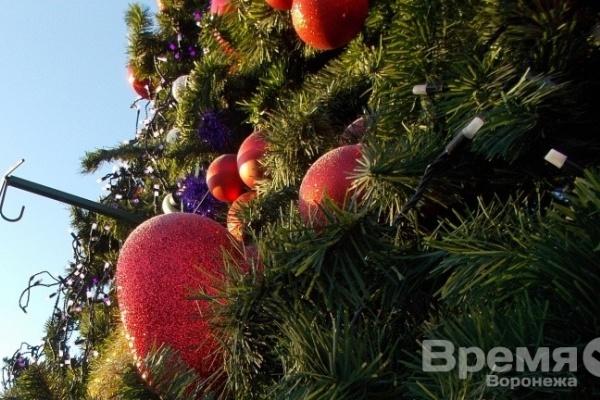 На площади в Воронеже повалили 9-метровую новогоднюю ёлку