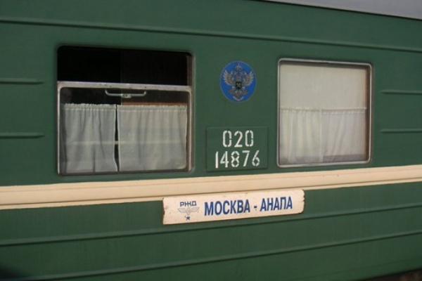 В Воронеже поезд насмерть сбил мужчину