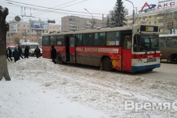Эксперт: Большинство воронежских маршруток не предназначены для перевозки людей в городе