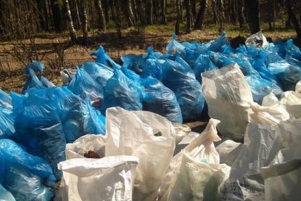 Воронеж объявляет войну мусору