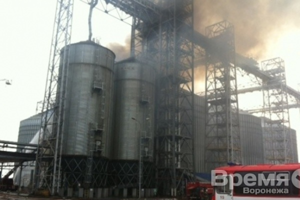 В Воронежской области загорелся завод подсолнечного масла