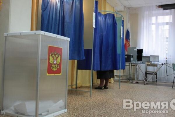 На этой неделе в Воронежской области  выберут депутатов в Поворинском и Семилукском районах
