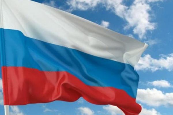 Задержаны футбольные фанаты, укравшие флаги в центре Воронежа