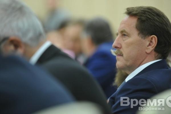 Нужны ли Воронежу лидеры кроме Алексея Гордеева?