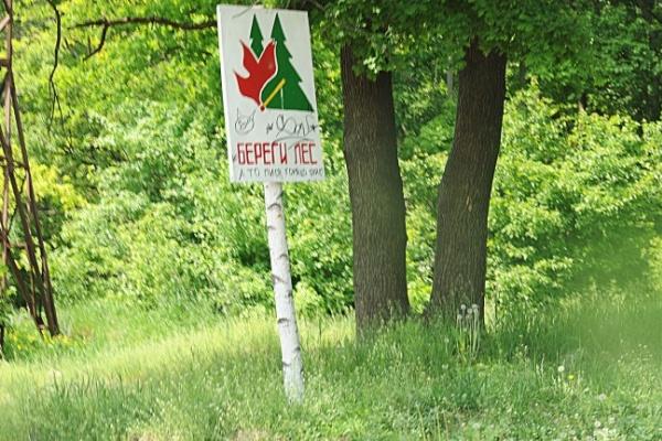 «Зеленая» горячая линия появится в Воронеже