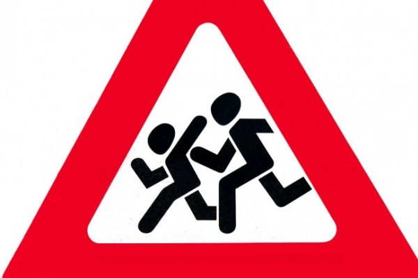 Суд заставил воронежские власти поставить дорожные знаки у школ и детсадов
