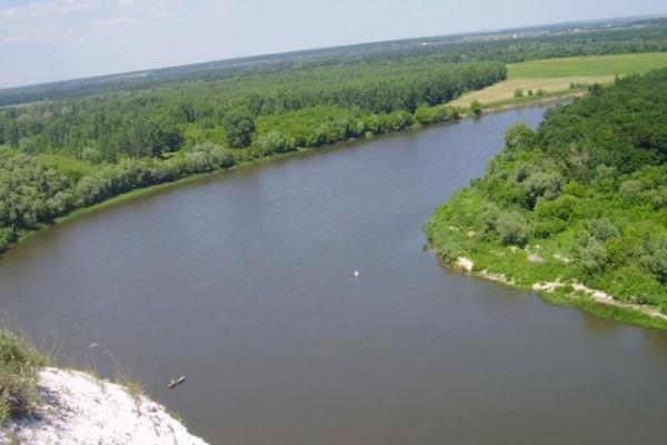 В Воронежской области построят новый мост через Дон