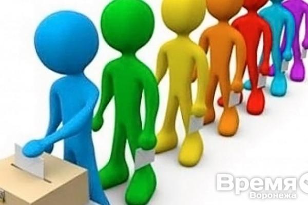 Смешанная система выборов в Воронеже во благо Системе