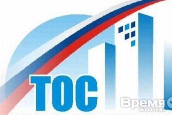 В Воронежской области создали общественное самоуправление