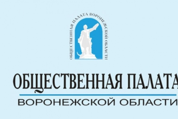 «Линия» Общественной палаты Воронежской области оказалась не такой уж «горячей»