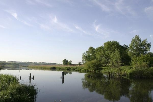 Экологи высоко оценили Воронежскую область