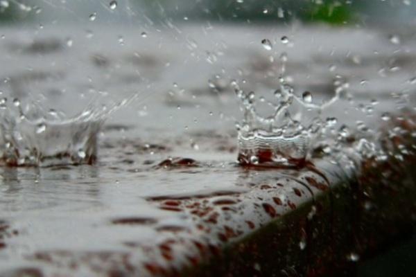 Воронеж неделю будут заливать дожди