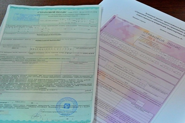 Воронежские любители страхового гламура  оценят новый полис ОСАГО