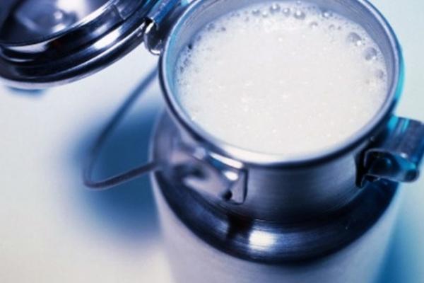 В воронежском детсаду обнаружено молоко с кишечной палочкой