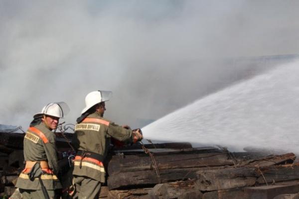 С начала года в Воронежской области в огне погибли 117 человек