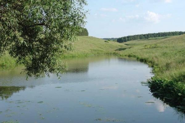 В Воронежской области на дно пруда ушел грузовик с водителем