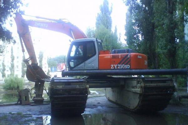 В Воронеже почистят Лебединое озеро