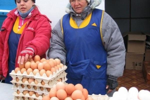 В Коминтерновском районе Воронежа выдавали незаконные разрешения на торговлю