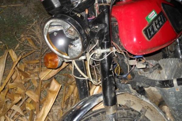 В Воронежской области под колесами грузовика погибли мотоциклист и его пассажир