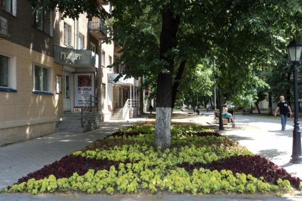 На благоустройство воронежских парков выделят около 40 миллионов рублей