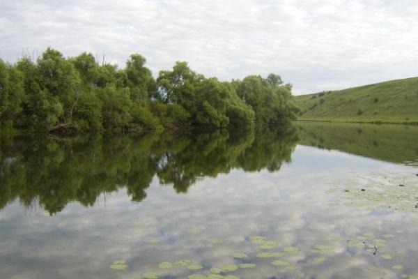 В Воронежской области утонули два человека