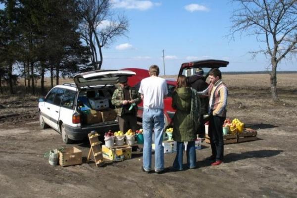 Власти Воронежской области пересчитали придорожных торговцев