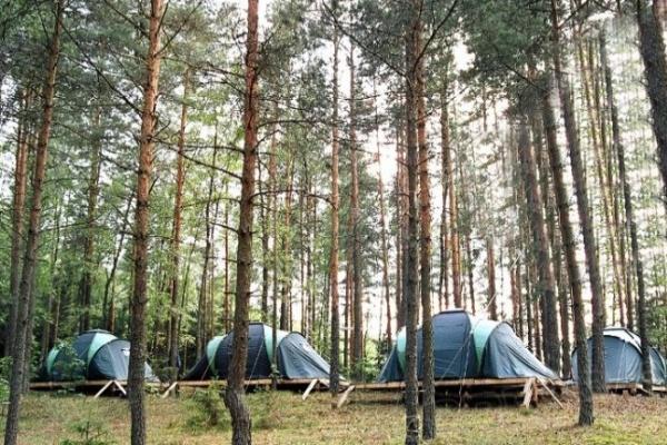 Под Воронежем детский лагерь ночью закидали петардами