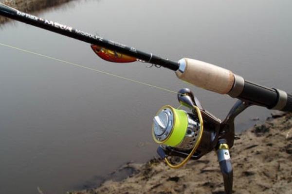 В Воронежской области рыбак ограбил администрацию платного пруда