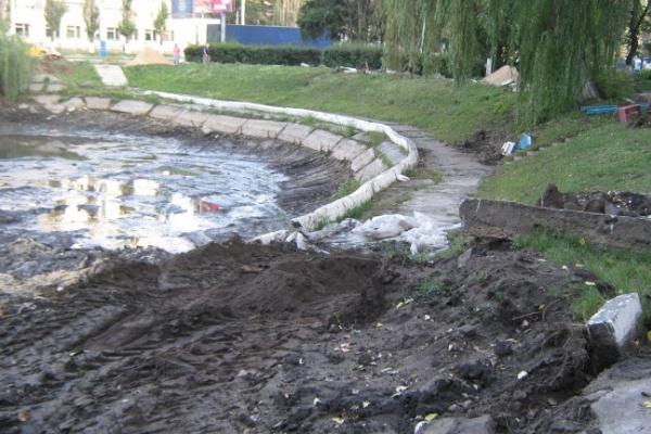 В Воронеже расчистить Лебединое озеро в срок не успели