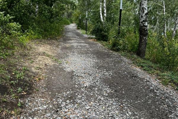 Воронежские и черногорские эксперты подискутировали о расширении НАТО на Балканах