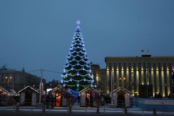 Новогоднюю ель в центре Воронежа установят и нарядят за 1,7 млн рублей