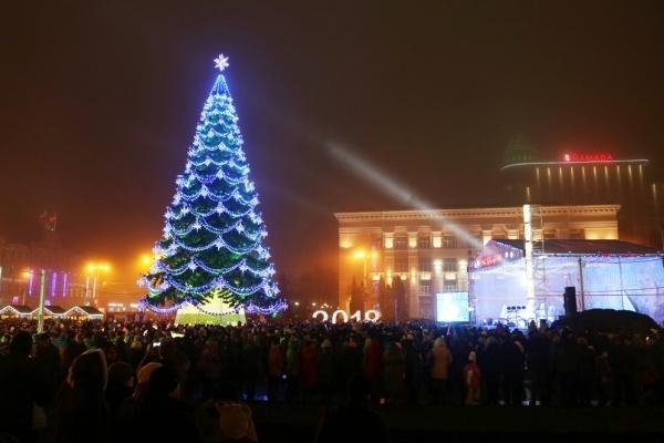 На муниципальный «Воронежгорсвет» пожаловались из-за тендера на установку елки на площади Ленина