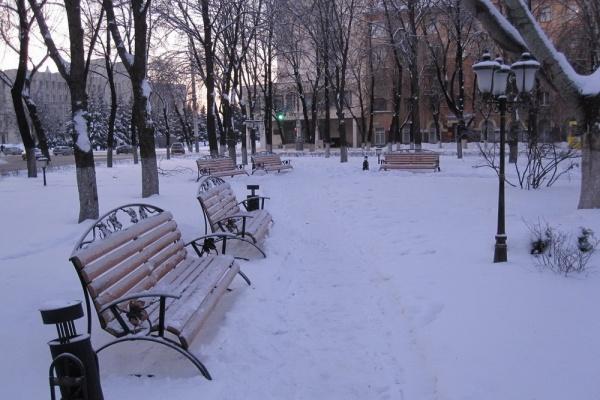 Содержание зелени в сквере у воронежского облправительства оценили в 2,7 млн рублей