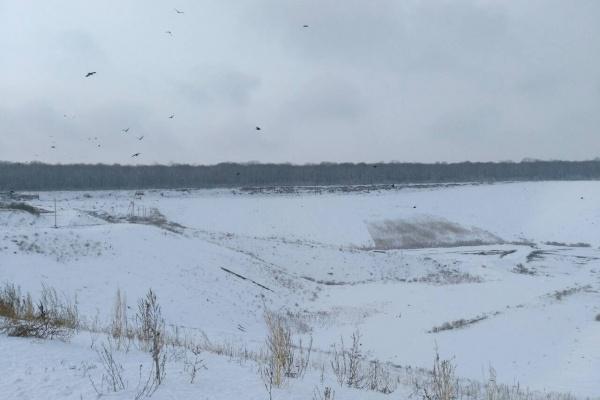 Мусорный полигон «Каскад» под Воронежем готовит к запуску вторую очередь