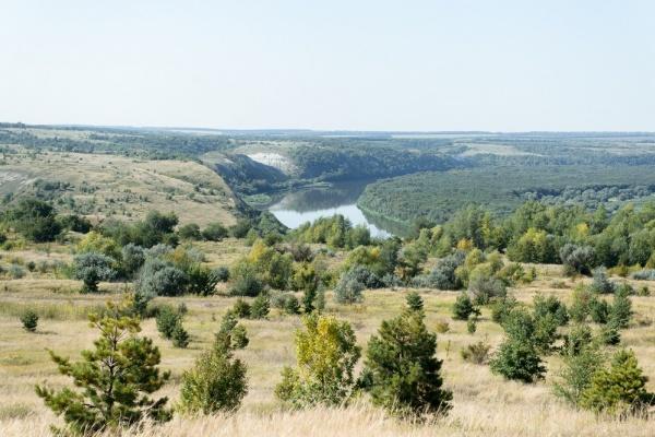 Воронежские поисковики начали раскопки в районе Осетровского плацдарма