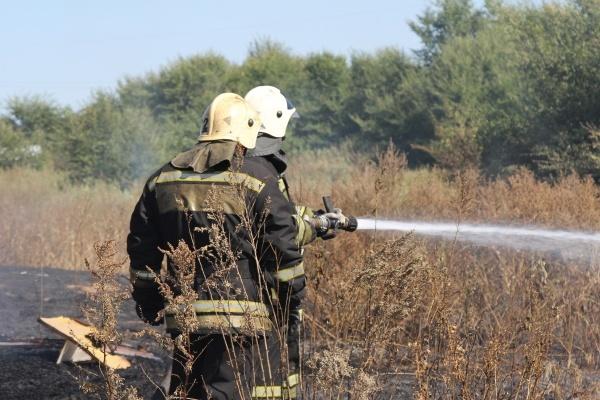 Прокуратура поторопила мэра Воронежа с решением проблемы тлеющих иловых полей