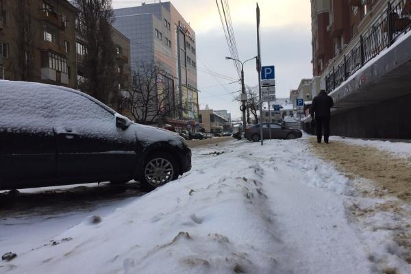 Мэрия Воронежа отчиталась о доходах в бюджет от платных парковок в 2018 году