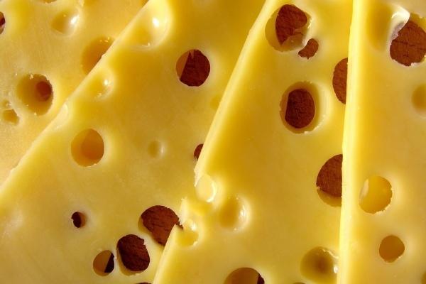 «ЭкоНива» осенью запустит сырный завод под Лисками Воронежской области