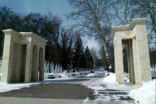Развитие Ботанического сада увяжут со второй очередью Центрального парка Воронежа