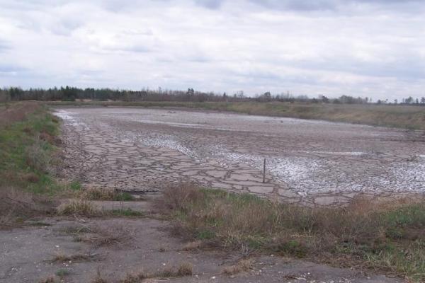 Управление экологии займется проектом обводнения заброшенных иловых карт в Воронеже