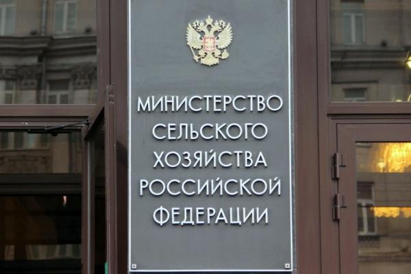 Минсельхоз одобрил 9,4 млрд рублей краткосрочных кредитов воронежским аграриям