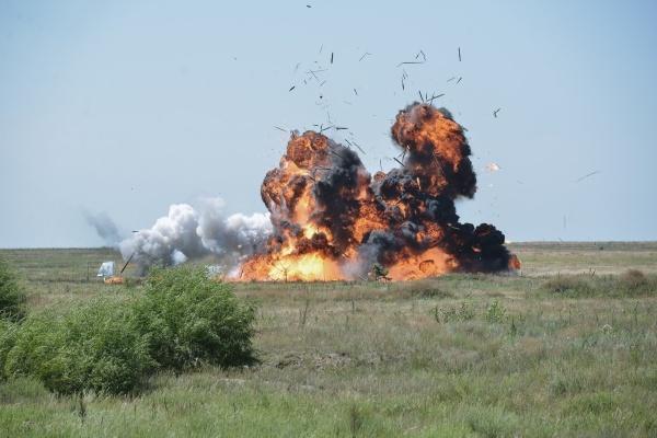 После пожаров на военном полигоне Погоново под Воронежем возбуждено два уголовных дела