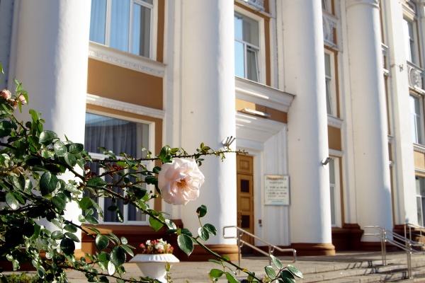В Воронеже на проект капремонта здания Никитинской библиотеки направят 4 млн рублей