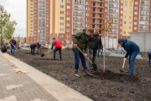 В Воронеже ДСК высадит 300 саженцев