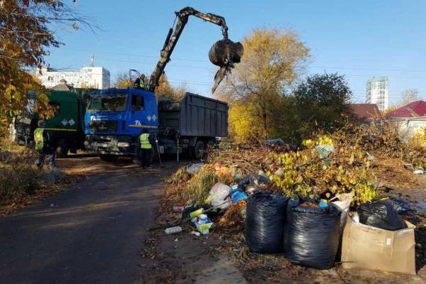 26 «слонов» мусора вывезли во время субботника в Воронеже