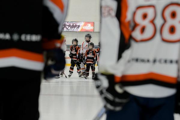 В Северном районе Воронежа открыли муниципальную спортшколу по хоккею