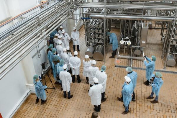 Воронежская область вошла в топ-3 по эффективности работы АПК