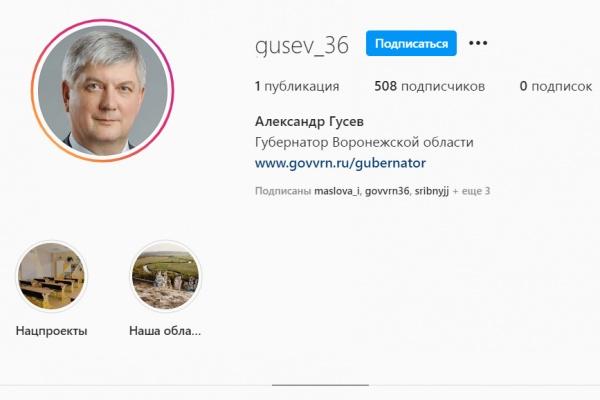 Воронежский губернатор решился на инстаграм
