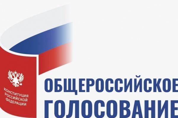 Где и как проголосовать по поправкам в Конституцию в Воронежской области