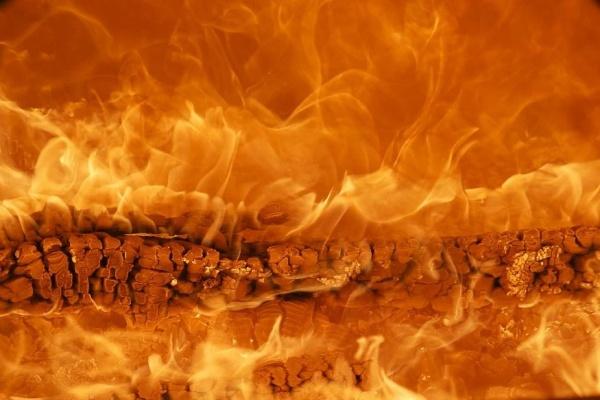 Распил пожарной вышки под Воронежем привел к ущербу в 3,3 млн рублей